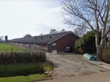 Hilvarenbeek: 'Gedogen varkensstal in Esbeek duurde te lang'