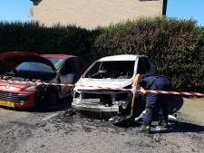 Politie onderzoekt link tussen grote vechtpartij en autobranden in Wezep