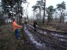'Bronckhorst moet handhaven bij illegaal slingerende sloot door bosgebied'