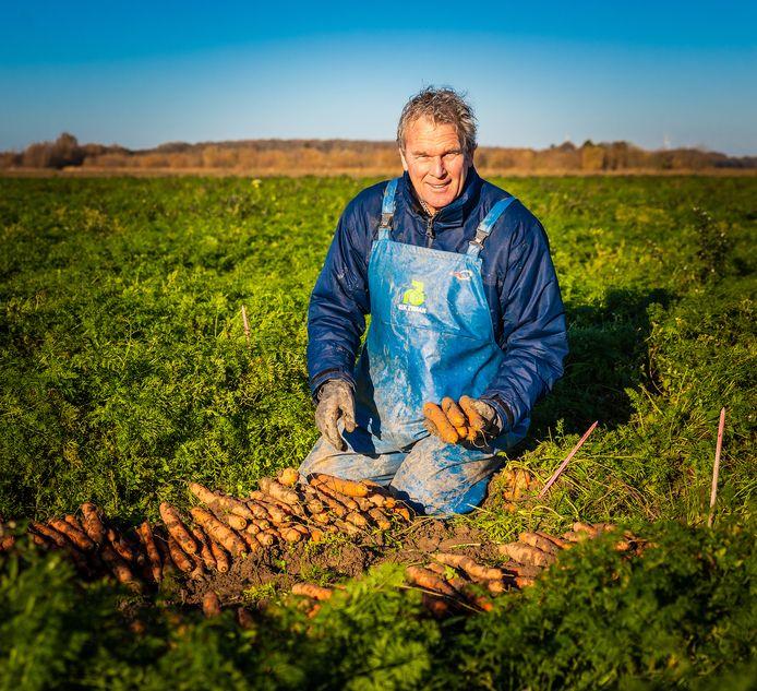 """Arno van Oers tussen de wortelen in de Zuid-Beijerlandse polder. ,,Doordat je hier een wat zwaardere grond hebt, zijn de producten die hier geteeld worden goed bewaarbaar."""""""