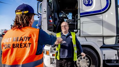 Brexit zonder akkoord kost Vlaamse bedrijven 800 miljoen euro per jaar