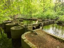 Natuurmonumenten uit zorgen over zonnepark bij ingang Waterloopbos