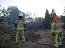 Brand verwoest 500m2 natuur op Lemelerberg