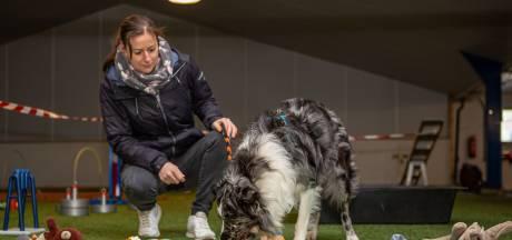 In deze escaperoom in Bergen op Zoom werken baasjes samen met hun hond