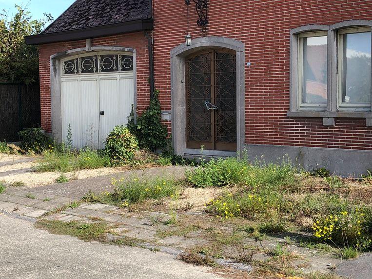 Op plaatsen waar woningen gesloopt zijn of leeg staan, groeit het onkruid.