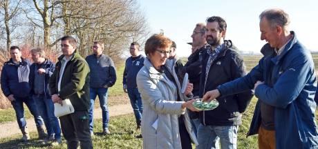 Boomkikkers snoepen bij opening nieuw natuurgebied in Strijdersgatpolder