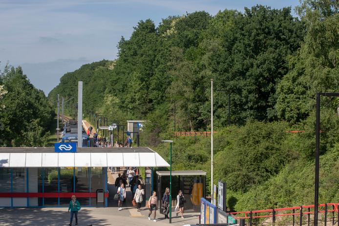 Station Rhenen met rechts gebied waarvoor een nieuwbouwplan ontwikkeld wordt