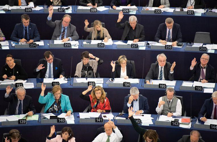 De leden van het Europees Parlement stemmen massaal voor het verbod.