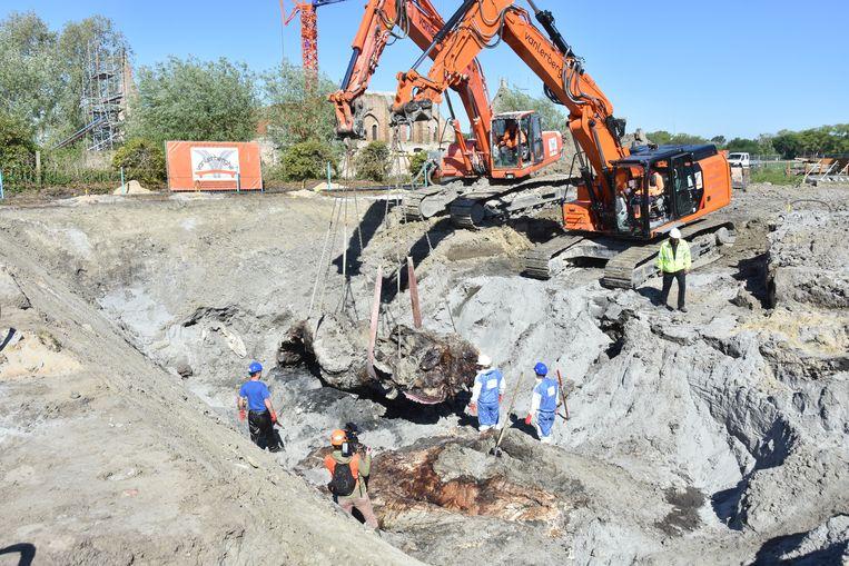 Met kranen werd het kadaver voorzichtig opgegraven