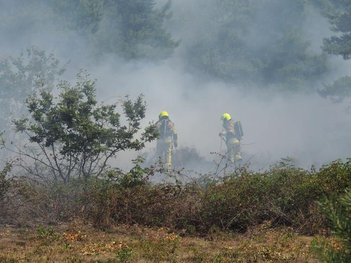 Een bosbrand eerder deze week in de bossen van Alverna.