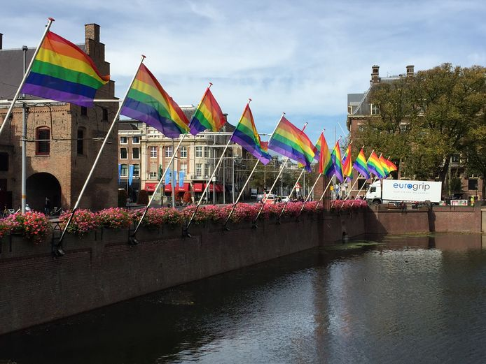 Regenboogvlaggen bij de Hofvijver bedoeld om de zichtbaarheid van queers in de stad te vergroten.