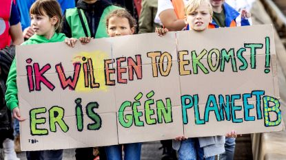 Stad gaat op zoek naar klimaatregisseur