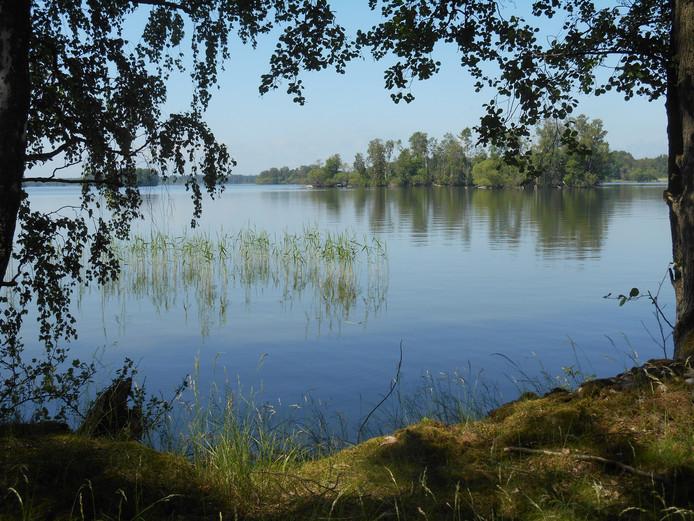 Wie gaat kamperen in Arbogo in Zweden heeft misschien wel dít uitzicht. Al moest de fotografe er wel een klein stukje voor fietsen, want dit deel valt net in het natuurreservaat.