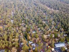 Topzomer lonkt voor vakantieparken in Oost-Nederland: 'Mensen nemen het zekere voor het onzekere'