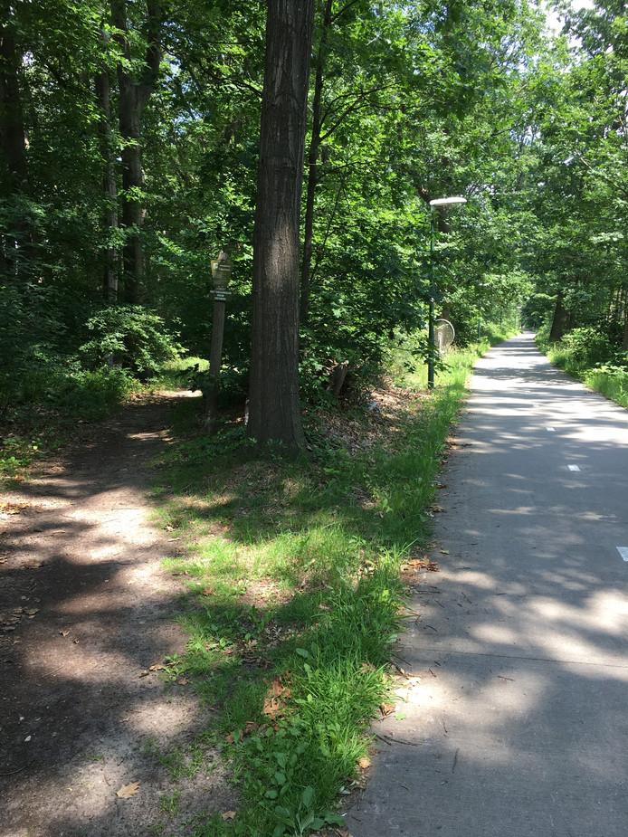 Waarom over het asfalt en niet over het bospad?
