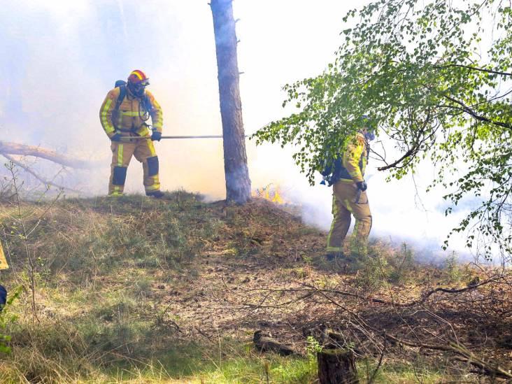 Bosbrand aan Rijtjesdijk Vlierden, vermoeden van brandstichting