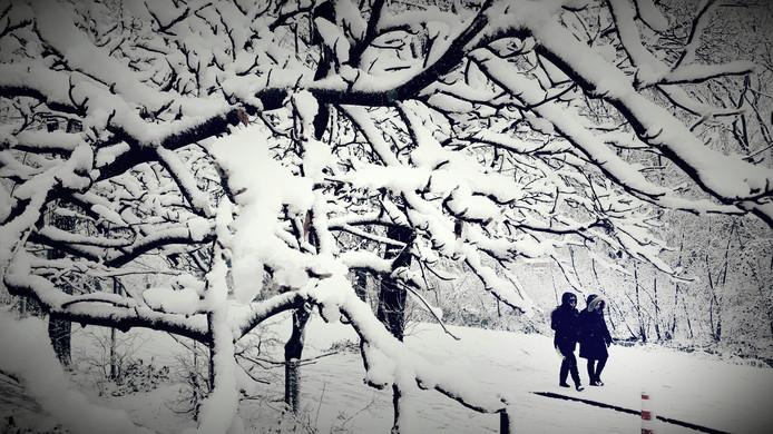 Archiefbeeld ter illustratie: Sneeuw bij Mariahoeve (2017)