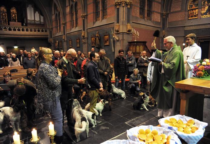 Zo'n 25 honden, hun baasjes en tientallen belangstellenden ontvingen vrijdagavond de zegen van pastoor Wiel Wiertz.