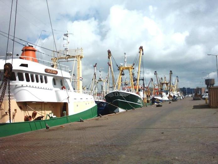 Vissersboten in IJmuiden