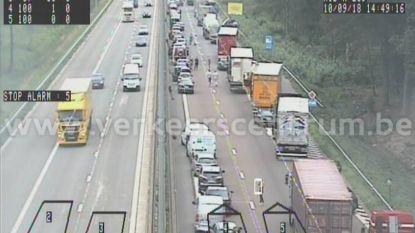 E313 weer vrijgemaakt na ongeval met vrachtwagens, zware hinder