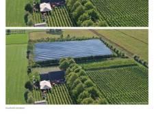 Duizenden zonnepanelen naast de wijnranken van 't Oerlegoed
