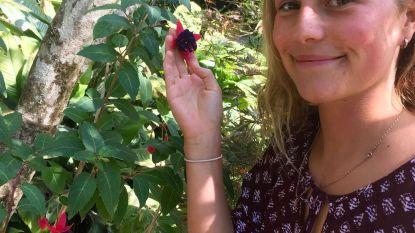 'Telefacts' zendt reportage over Julie Van Espen toch uit