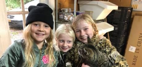 Lof voor zusjes na redden van kat uit sloot in Sleeuwijk