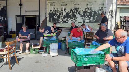 Steeltjestijd in de Brouwerij Cnudde in Eine,  want de krieken zijn aangekomen