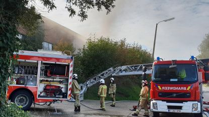 Straatveegmachine van 90.000 euro gaat in vlammen op