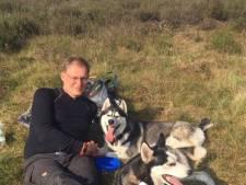 Scooter rijdt husky Kida uit Renswoude dood en gaat ervandoor