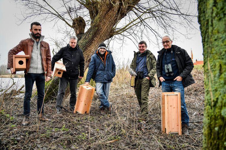 De leden van de Steenuilenwerkgroep Midden-Schelde zullen zorgen voor extra broedplaatsen voor de vogels.