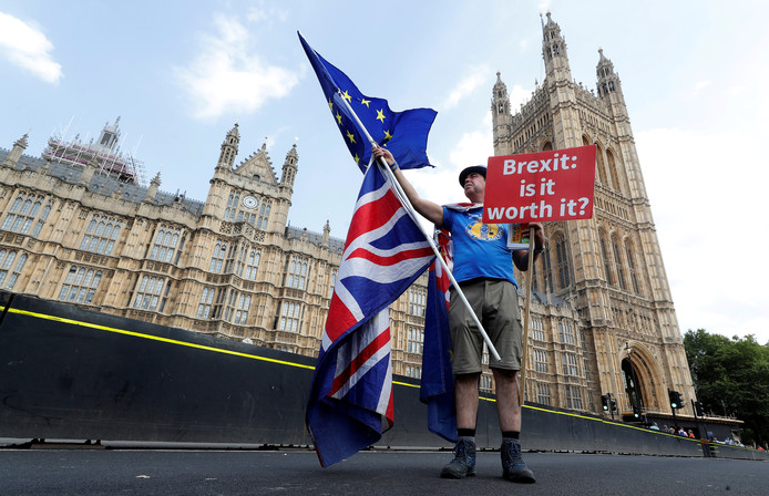 Een anti-Brexit-demonstrant op Westminster Bridge in ­Londen.