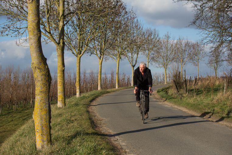 """Het klimmetje van Jesseren naar Zammelen """"Een paar honderd meter Zuid-Frankrijk in het hart van Haspengouw."""""""