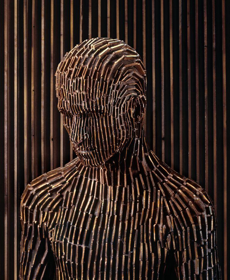 Levi van Veluw: Origin of the Beginning 2.3, 2011 (foto). Beeld Levi van Veluw