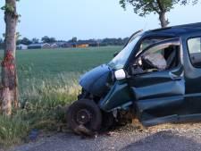 Bestuurster gewond bij botsing met boom in Holten