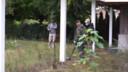 Experts van Defensie onderzoeken met metaaldetectoren een huis en tuin van Geldroppenaar Tom van H.