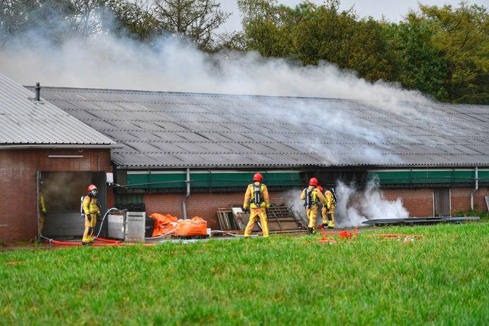 Brand varkensstal in Sterksel. 1200 dieren zijn aanwezig.