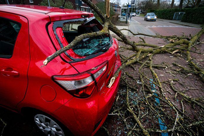 'Na een paar flinke stormen gaat de autopremie ook niet ineens omhoog'.