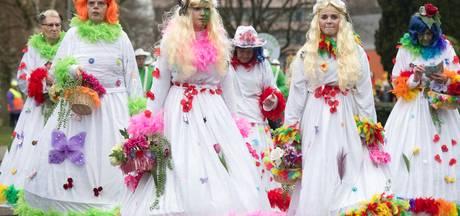 Carnavalsoptochten regio Rheden bij  de tijd en superkleurig