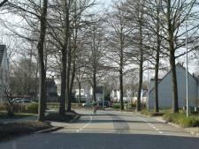 Goirle kapt 140 bomen in Groote Akkers