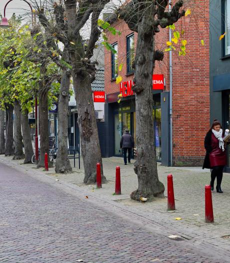 Zilverlindes aan Marktstraat in Made behouden, maar zonder boomborders