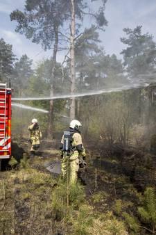 Denekampse brandstichter ontkent reeks bosbranden te hebben aangestoken