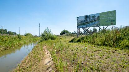 """Betonnering Vlaams landschap neemt toe volgens Groen: """"Betonversnelling in plaats van betonstop"""""""