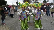 Vijf tips voor dit weekend: Carnaval, een stevige wandeling en theater in het Brussels