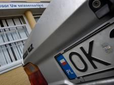 Aantal Polen in Molenwaard explosief gestegen