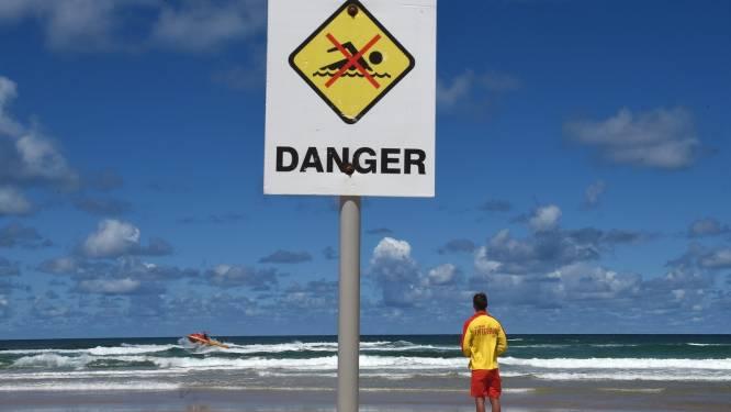 Australiër zwaargewond na aanval haai