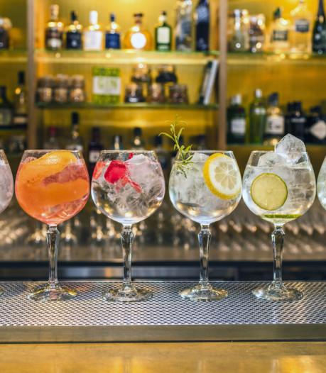 Zo smaakt je gin-tonic thuis net zo lekker als in de bar