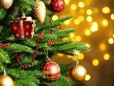 Ergernissen met kerst: houd de lichtjes uit de knoop en beestjes uit je boom