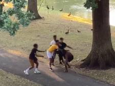 Steekpartij in Apeldoorn blijkt gefilmd: vrouw springt tussen vechtende mannen