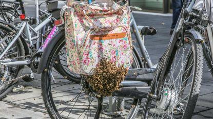 Wanneer het bloemenmotief op je fietstas even geen goed idee lijkt...